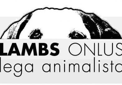 LAMBS Onlus lega animalista